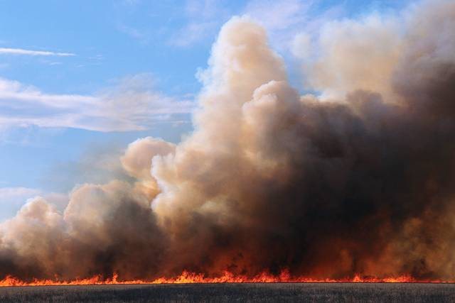 Forest_fires_greece2