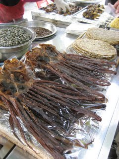 Dried squids and octopuses