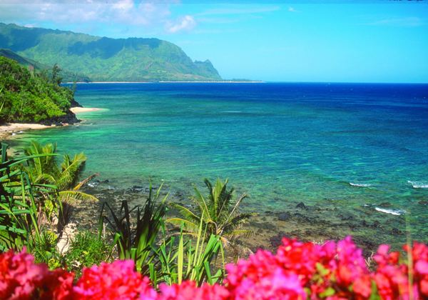 In Addition To The Beaches Tourists Hawaii Entail More And Rare Beauty Of Underwater World Hawaiian Islands As A Diving Area Are Ranked Fourth
