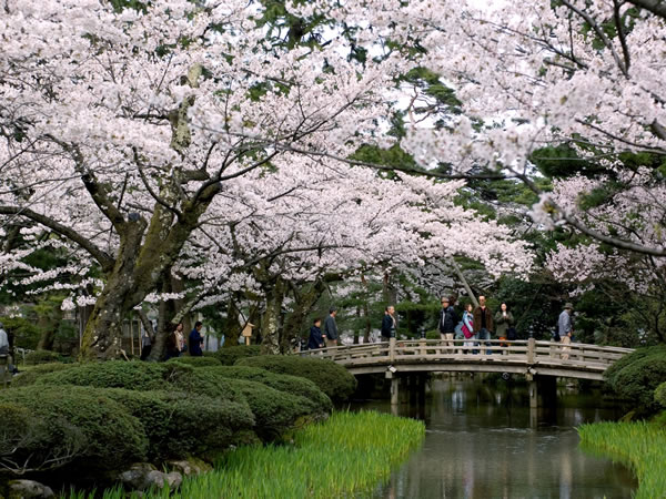 Top 3 Famous Japanese Gardens