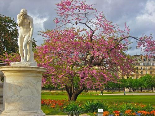 Jardin des tuileries paris - Jardin des tuileries restaurant ...