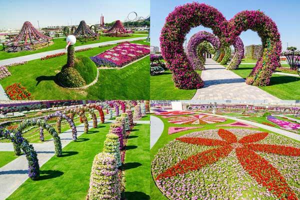 dubailand miracle garden dubai s new eco tourist attraction