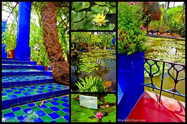the beauty of Majorelle-Gardens